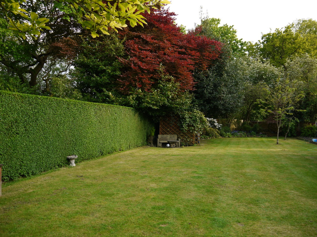 hedges trimmed