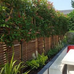 Will a well-designed garden add value to my house?
