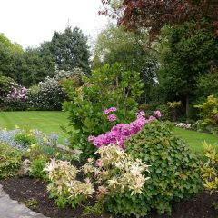 Garden Landscaping For A Picture-Perfect Exterior