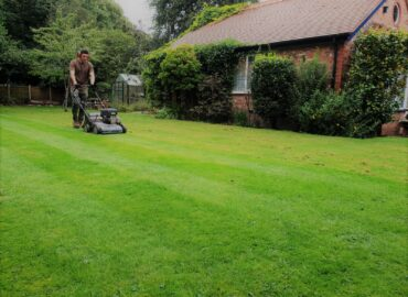 5 top tips to maintaining your garden